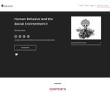 Human Behavior and the Social Environment II