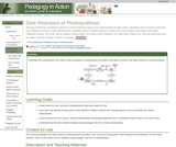 Dark Reactions of Photosynthesis